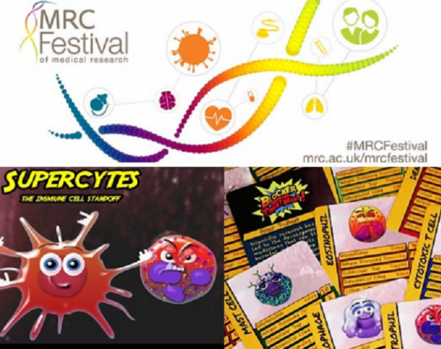 """Supercytes – the immune cell standoff"" Teacher Training: MRC Festival of Medical Research 2017 event"
