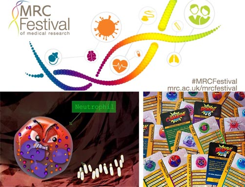 MRC Festival of Medical Research 2018 event: Supercytes Teacher Training